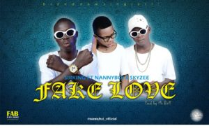 Download music: Sirking Ft Nannyboi & Skyzee – Fake love